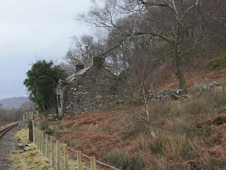 Looking at Gelliwiog cottage, above Dduallt