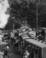 Trains pass at Tan y Bwlch